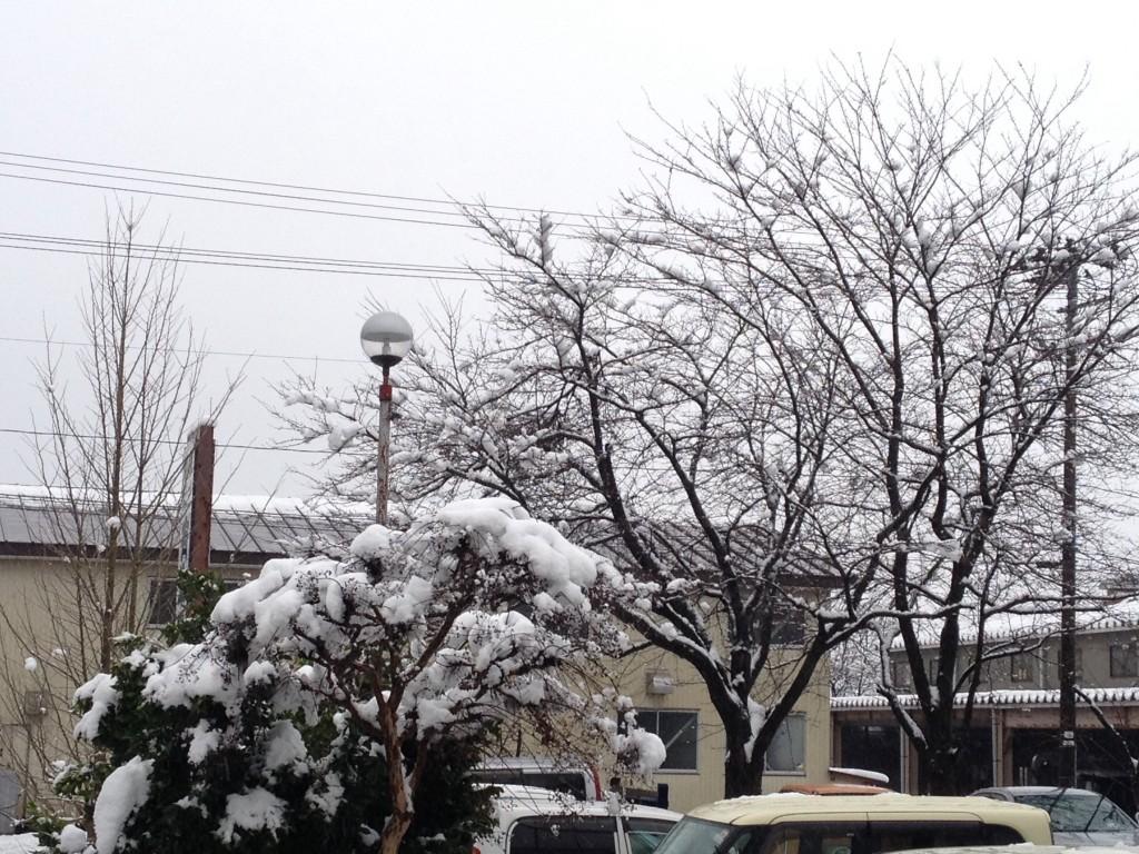 20131213 雪